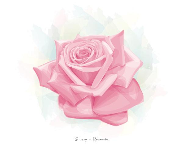 Glossy Roseate