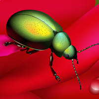 Create a Rainbow Beetle Using Adobe Illustrator &#8211; Vector Premium Tutorial