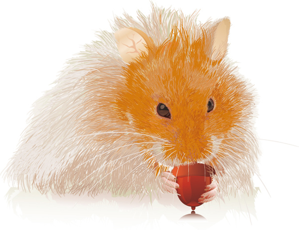 Little Hamster Available to Download for Free from VectorTuts