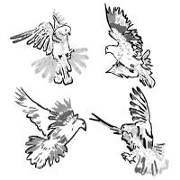 Artistic Pigeons – Vector Freebie