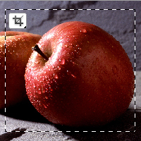 Quick Tip: How to Crop Raster Image in Adobe Illustrator