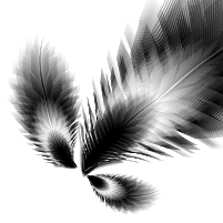 Quick Tip: How to Make a Feather Brush in Adobe Illustrator