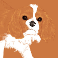 Create an Adorable Puppy with Negative Space and the Paintbrush Tool