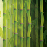 Create a Vector Bamboo Forest with Blends, Brushes and Profiles