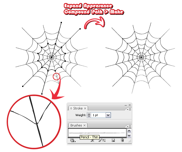 how to draw a funnel web spider step by step
