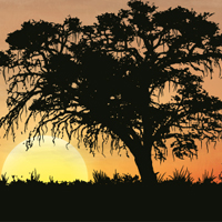 Create an African Silhouette Sunset Using Image Trace in Illustrator CS6